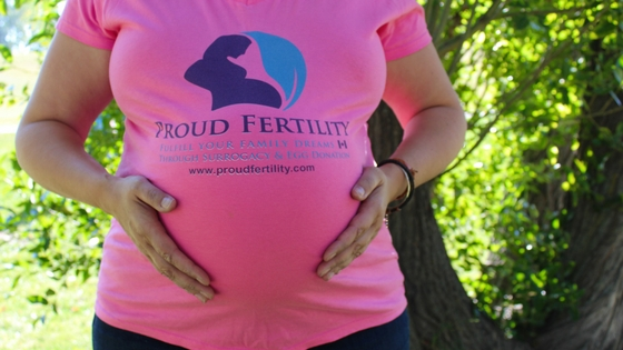 Surrogacy Interest Application